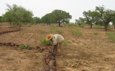 1,2 million de personnes touchées par la crise humanitaire au Burkina Faso